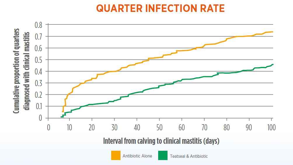 Quarter Infection Rate